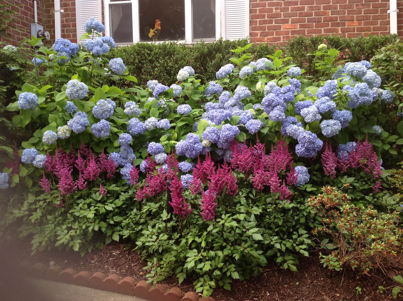 summer perennials con kel landscaping On flowering landscape plants