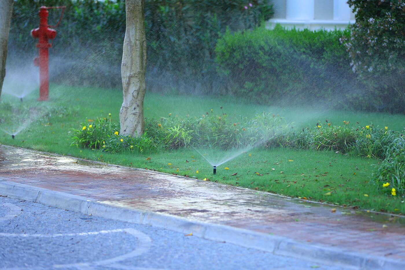 irrigation02